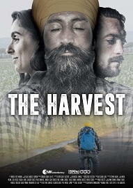 THE HARVEST - Il 20 novembre all'AAMOD di Roma