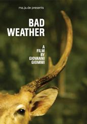 "locandina di ""Bad Weather"""